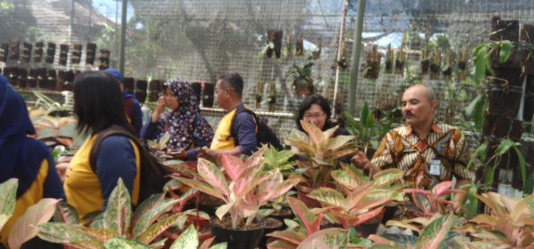Prodi Biologi Laksanakan Praktek Kuliah Lapangan di UPT Laboratorium Pertanian